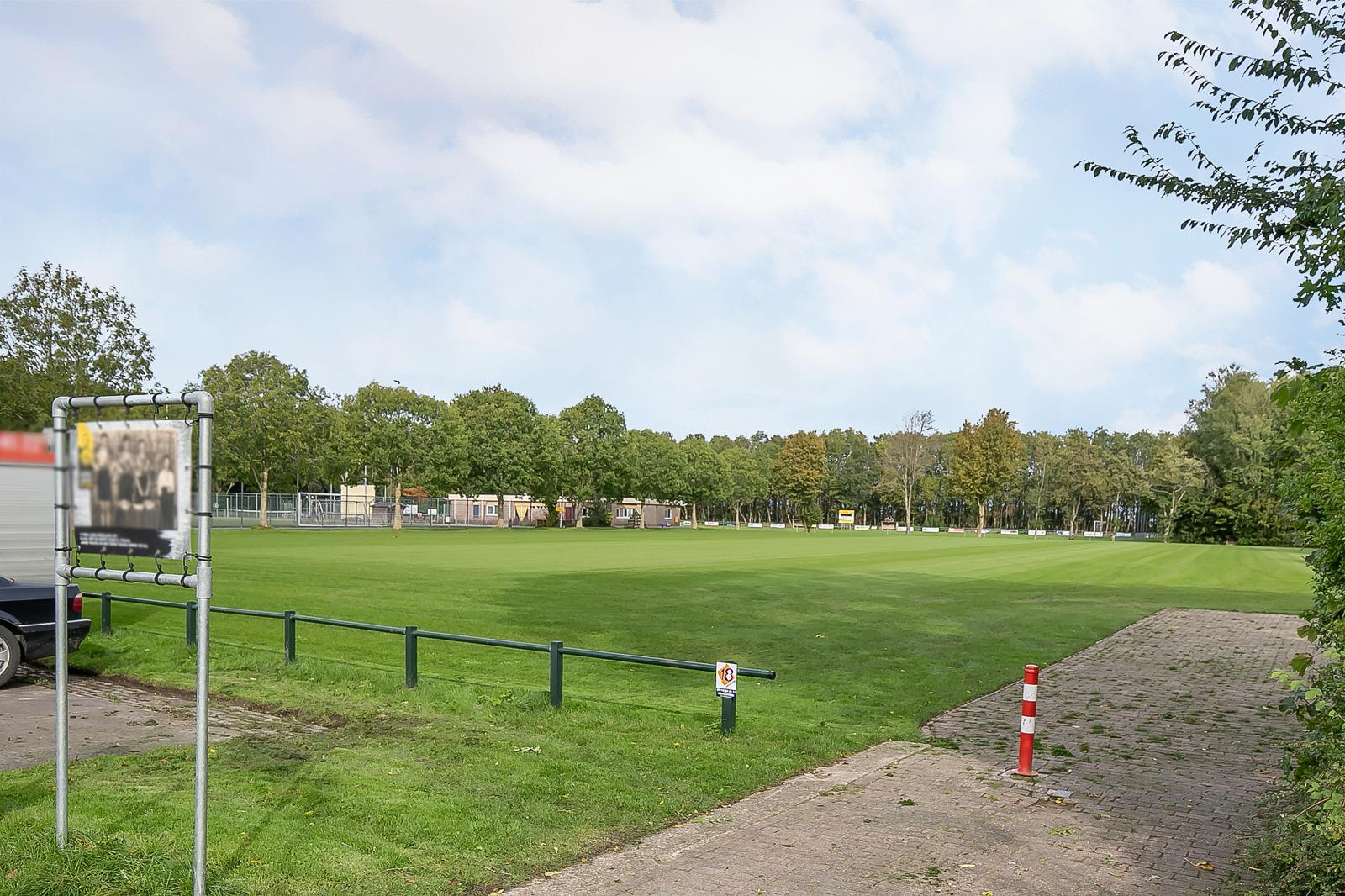 willem-westrastrjitte-3-arum-604